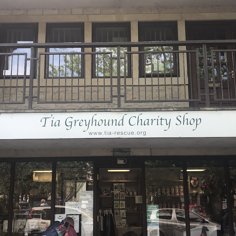 The Greyhound Charity Shop
